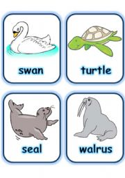 English Worksheets:  FLASHCARD SET 5- SEA ANIMALS AND CREATURES - PART 1 OF 3 (30.07.2008)
