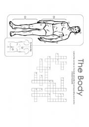 English Worksheet: The Body Crossword Puzzle - Greyscale 30.07.08