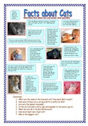 English Worksheet: Facts about cats (31.07.08)