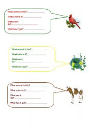 English Worksheets: Answer the questions about the animals