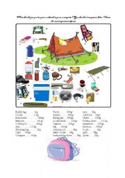camping vocabulary, speaking activity, reaching a consensus.