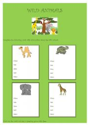 English Worksheet: Wild Animals