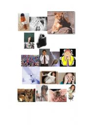 English Worksheet: Pictures on Phobias