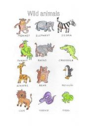 English Worksheets: Wild animals picture dictionary