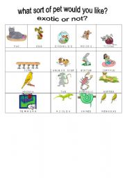 English Worksheet: What sort of pet do would you like?