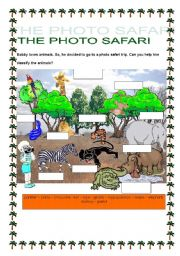 English Worksheets: THE PHOTO SAFARI