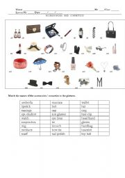 English Worksheet: Accessories and Cosmetics