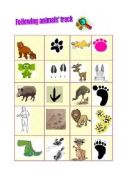 English Worksheets: Following animals� track
