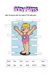 English Worksheets: Body parts - Girl