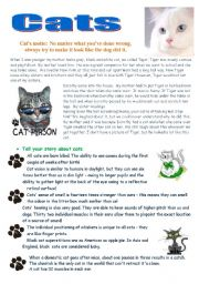 English Worksheet: Cats