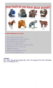English Worksheets: Quizz about animals