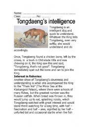 English Worksheets: Tongdaeng�s Intelligence