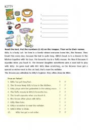English Worksheets: A Lucky Cat