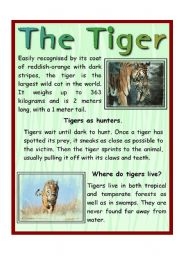 English Worksheets: The Tiger