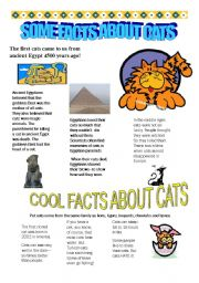 English Worksheet: some facts about cats