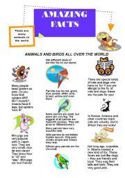 English Worksheets: amazing facts