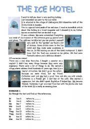 English Worksheet: The Ice Hotel