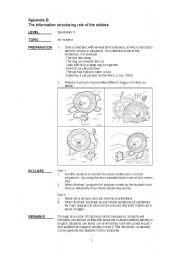 English Worksheets: article