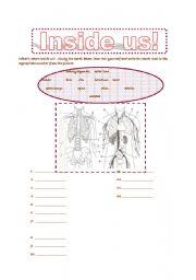 English Worksheets: INSIDE US!