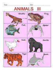 English Worksheets: ANIMALS PART III