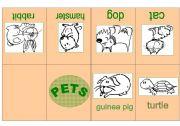 English Worksheet: PETS MINIBOOK