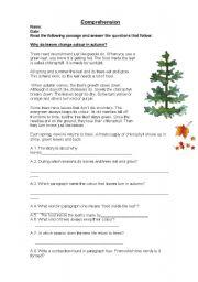 English Worksheets: redaing comprehension