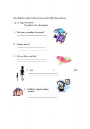 English Worksheets: Yes or No Ans