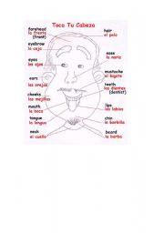 English Worksheets: Parts of head