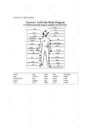 English Worksheets: label the body worksheet