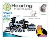 English Worksheet: Five senses - Hearing 1/5