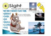 English Worksheet: Five senses - Sight 2/5