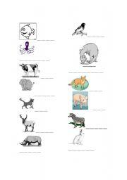 English Worksheets: Animal wordsheet