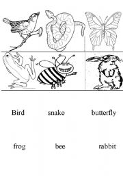 English Worksheets: animals memory cards