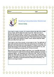 English Worksheets: Human body reading comprehension