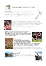 English Worksheet: New Zealand facts - elementary reading