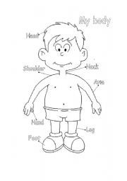 my body coloring book pages   my body - worksheet by Diana Diaz
