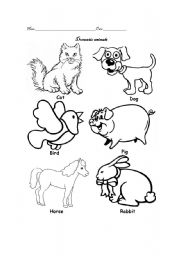 English Worksheet: domestic animals