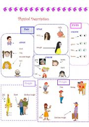english worksheet physical description part 01