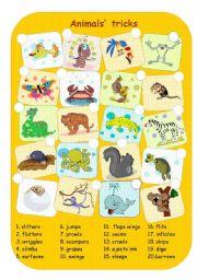 English Worksheets: Animals� tricks