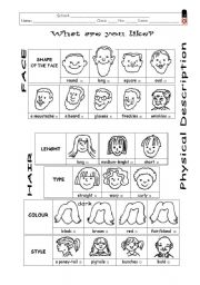 English Worksheet: Physical description - what are you like?