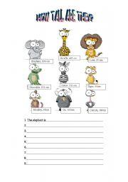 English Worksheets: How Tall Are They?