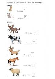 English Worksheets: Animals - true or false (Cambridge exercise)