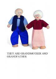English Worksheets: GRANDMOTHER AND GRANDFATHER