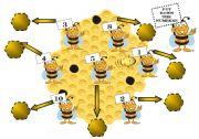 English Worksheets: Pretty Bees