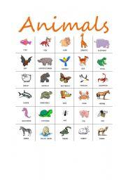 English Worksheets: Animal Collection