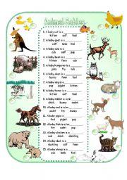 English Worksheets: Animal Babies