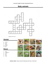 English Worksheets: Baby Animals Crosswords Puzzle