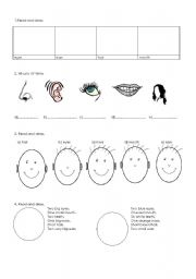 English Worksheets: THE HEAD