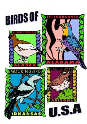 English Worksheets: BIRDS OF U.S.A. ONE.
