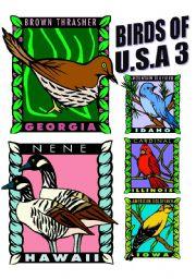 English Worksheets: BIRDS OF U.S.A. THREE.